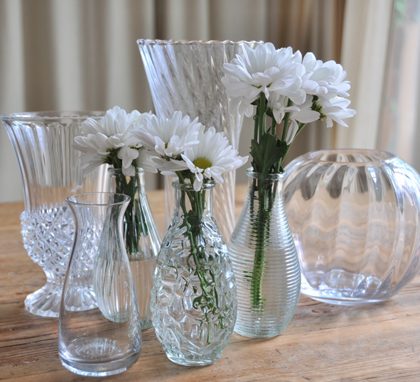 Clear Vases Zebra Rose